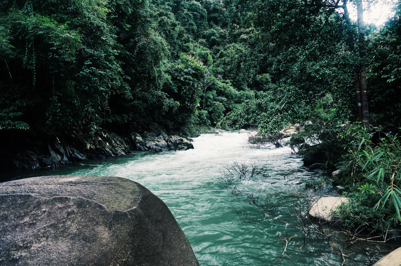 Khao Sok Naturerlebnis in Thailand, Nationalpark