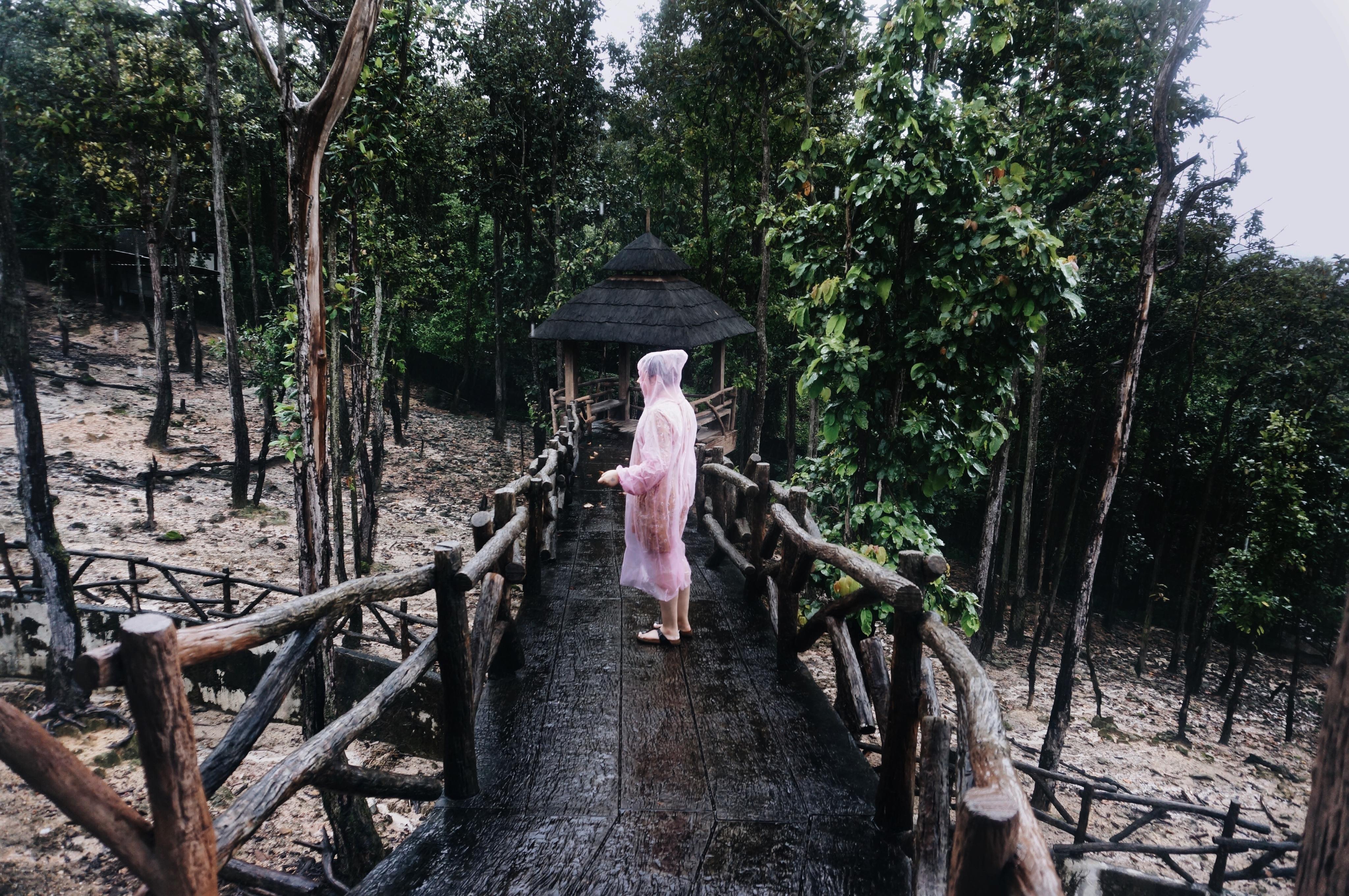 Regenzeit in Thailand, Reisezeit Thailand