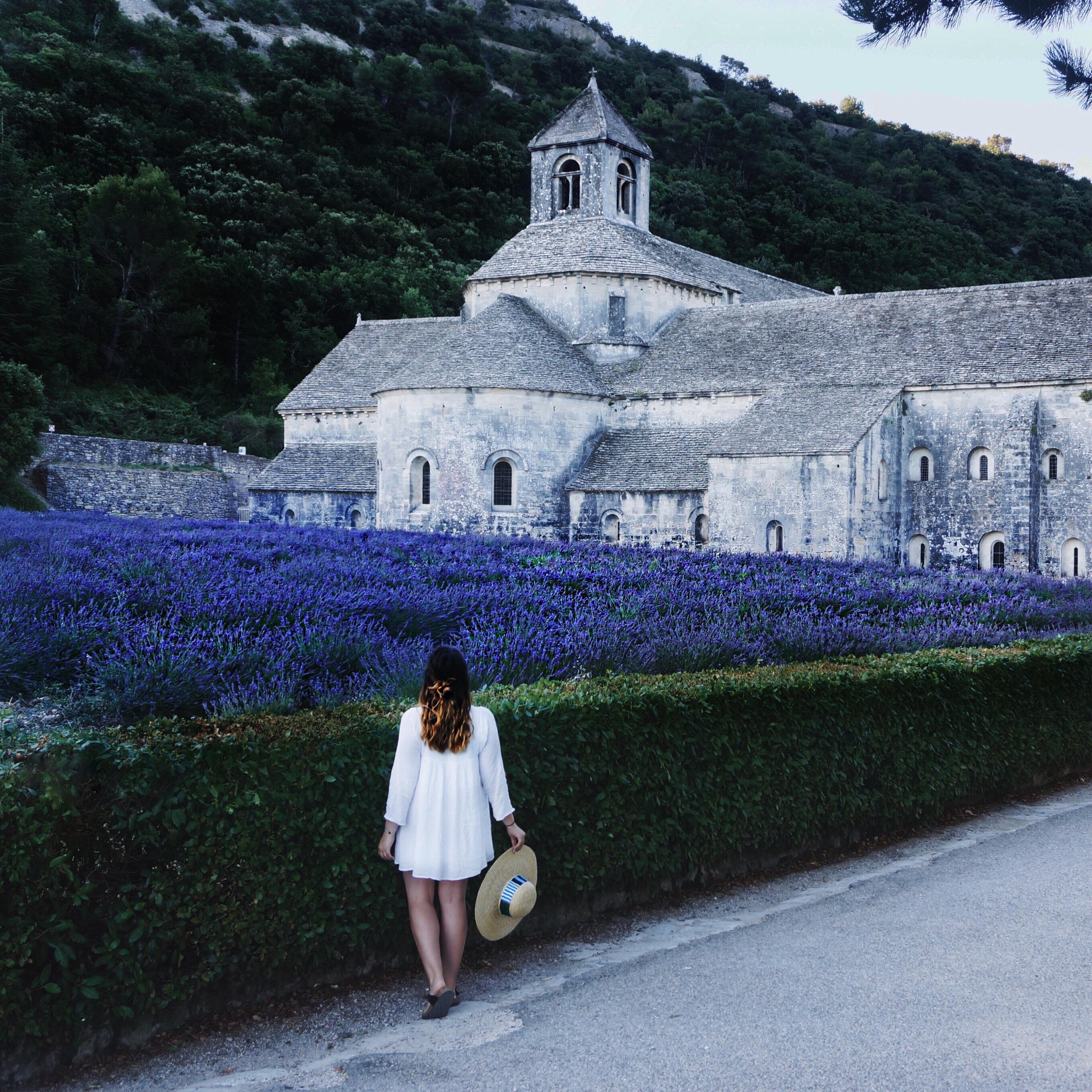 Frankreich Sehenswürdigkeiten, Provence, Lavendel, Kirchen, Urlaub, Reisen, Lavendelfelder Urlaub, Senauqe, Abbaye