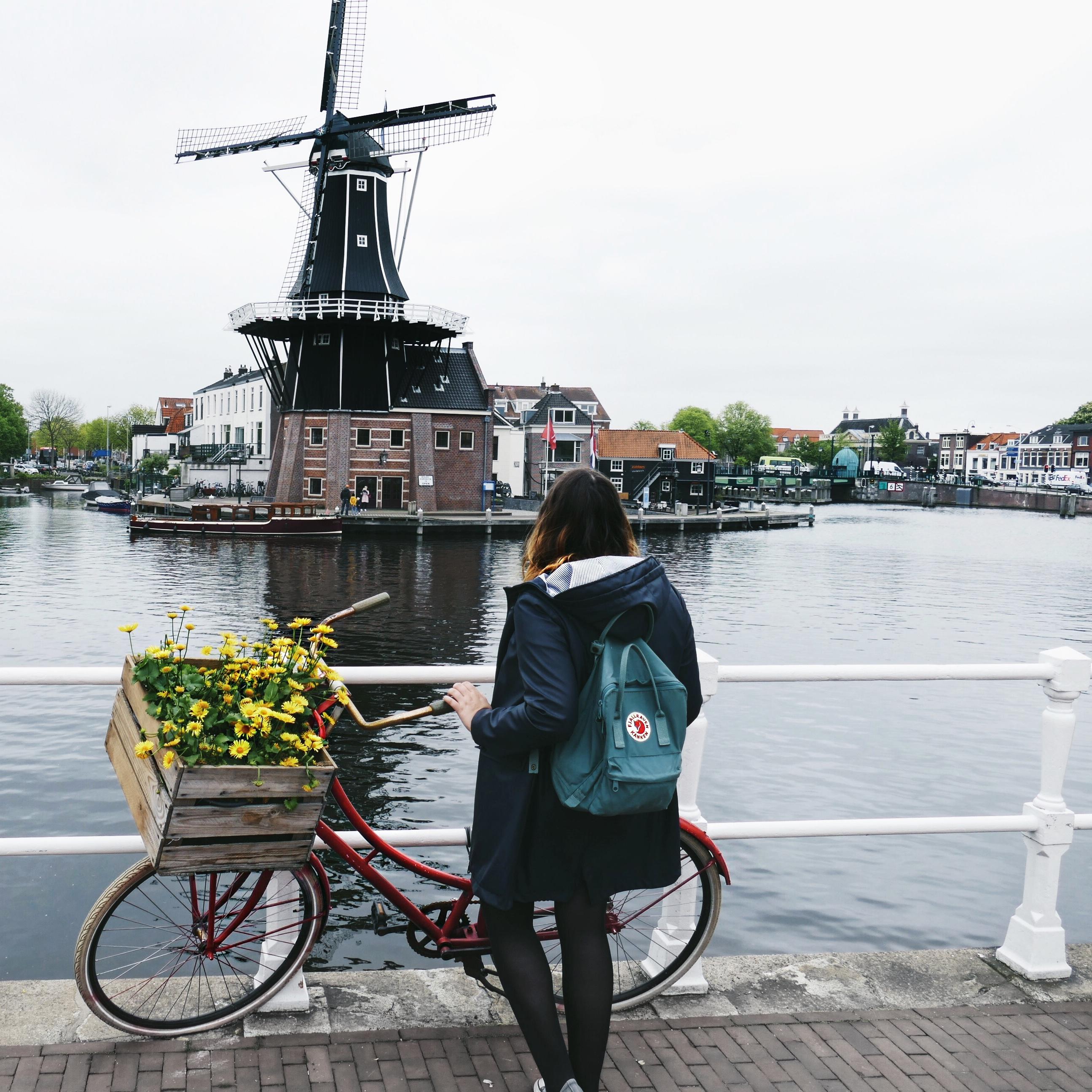 Windmühle in Haarlem