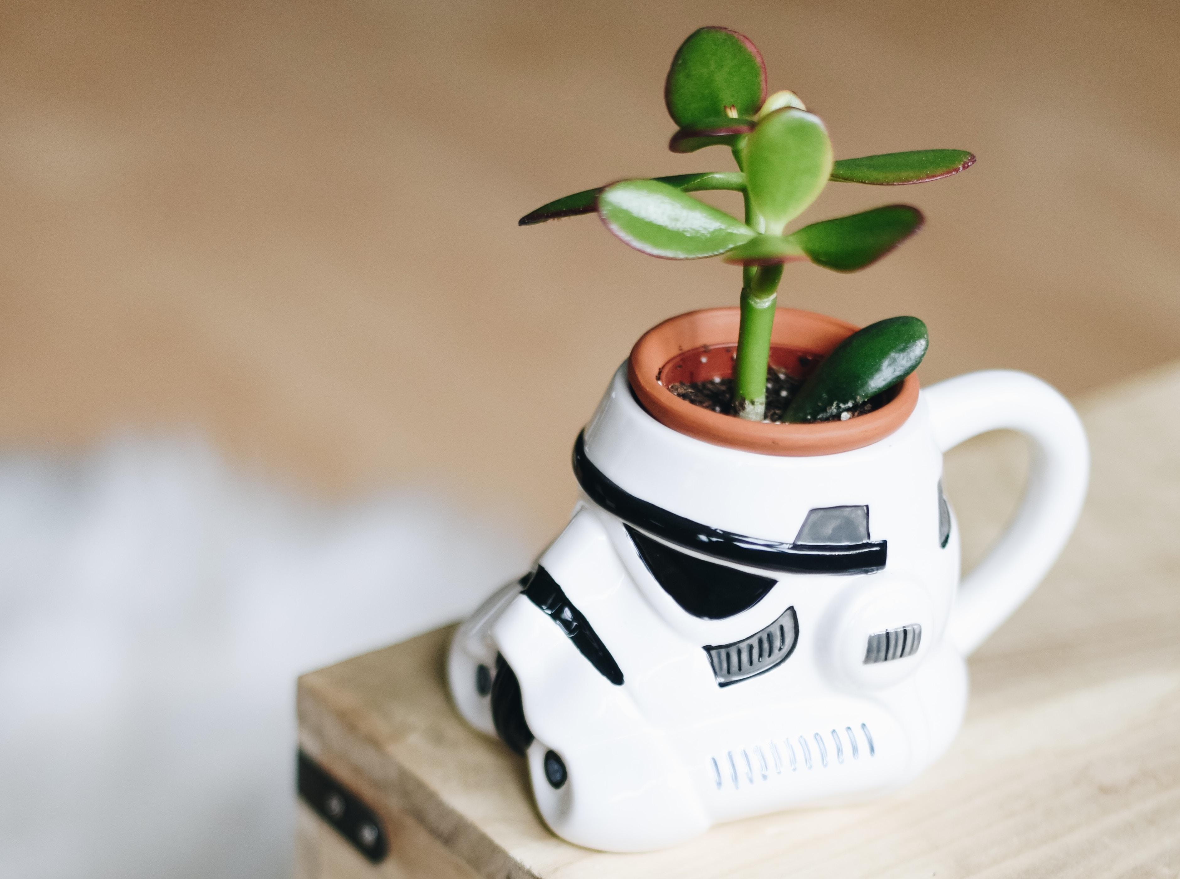Geschenkideen für Star Wars Fans – Geschenke für Männer